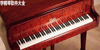 学钢琴软件