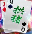 贵州拱猪棋牌