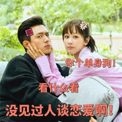 亲爱的热爱的李现杨紫搞笑表情包