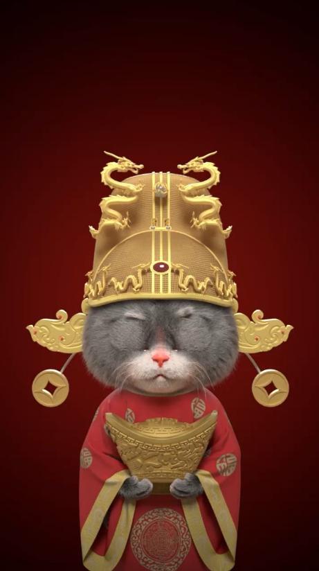 斑布貓手機壁紙