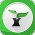 茶树浏览器
