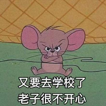 猫和老鼠开学表情包