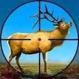 野鹿射击冒险