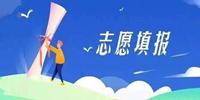 山东高考志愿报考指南软件推荐